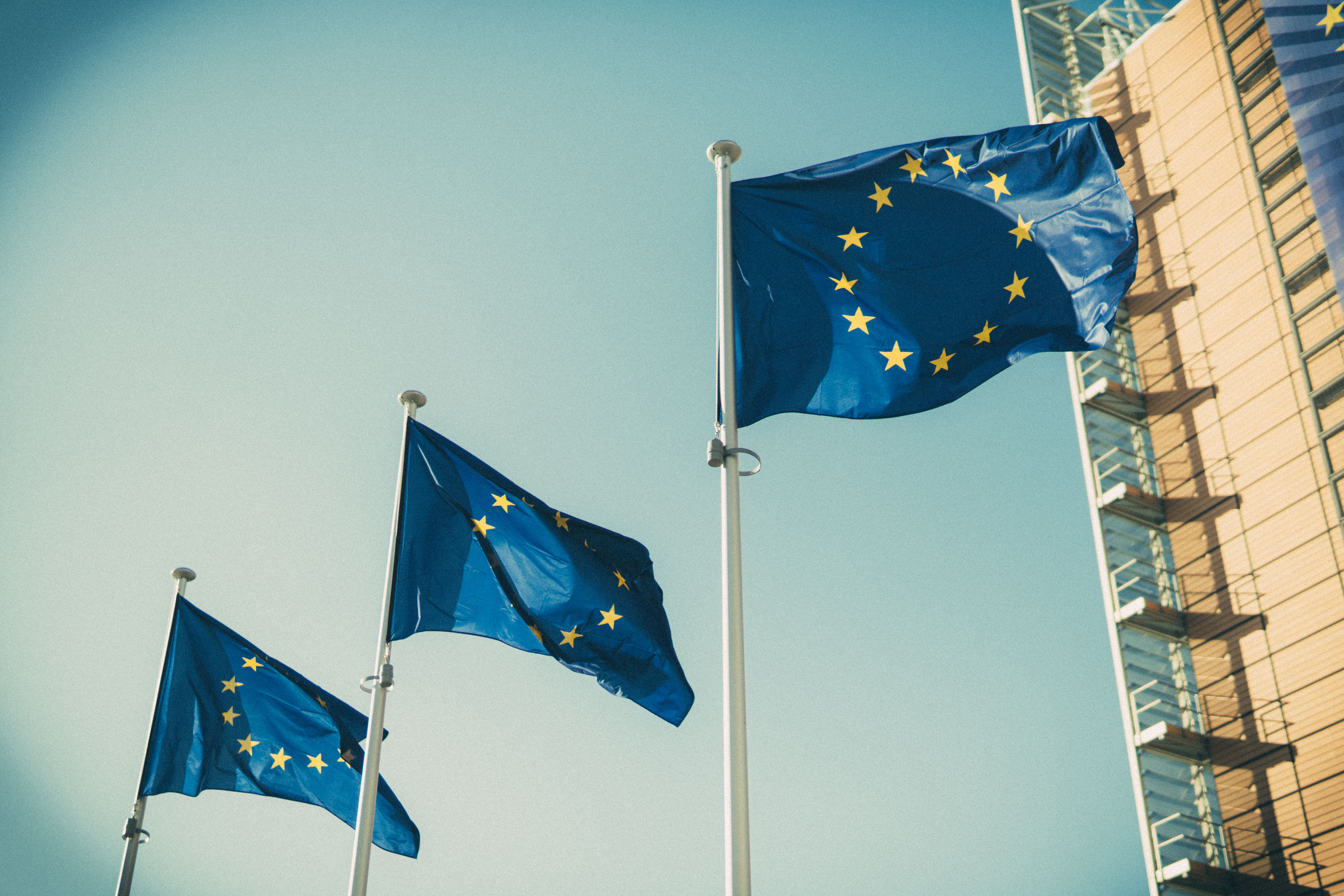 The year 2019 will be a defining year for the EU